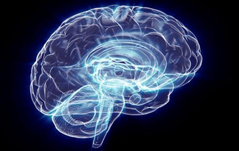 Alzheimer's and Brain Awareness Month
